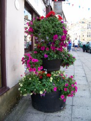 picture of a planter